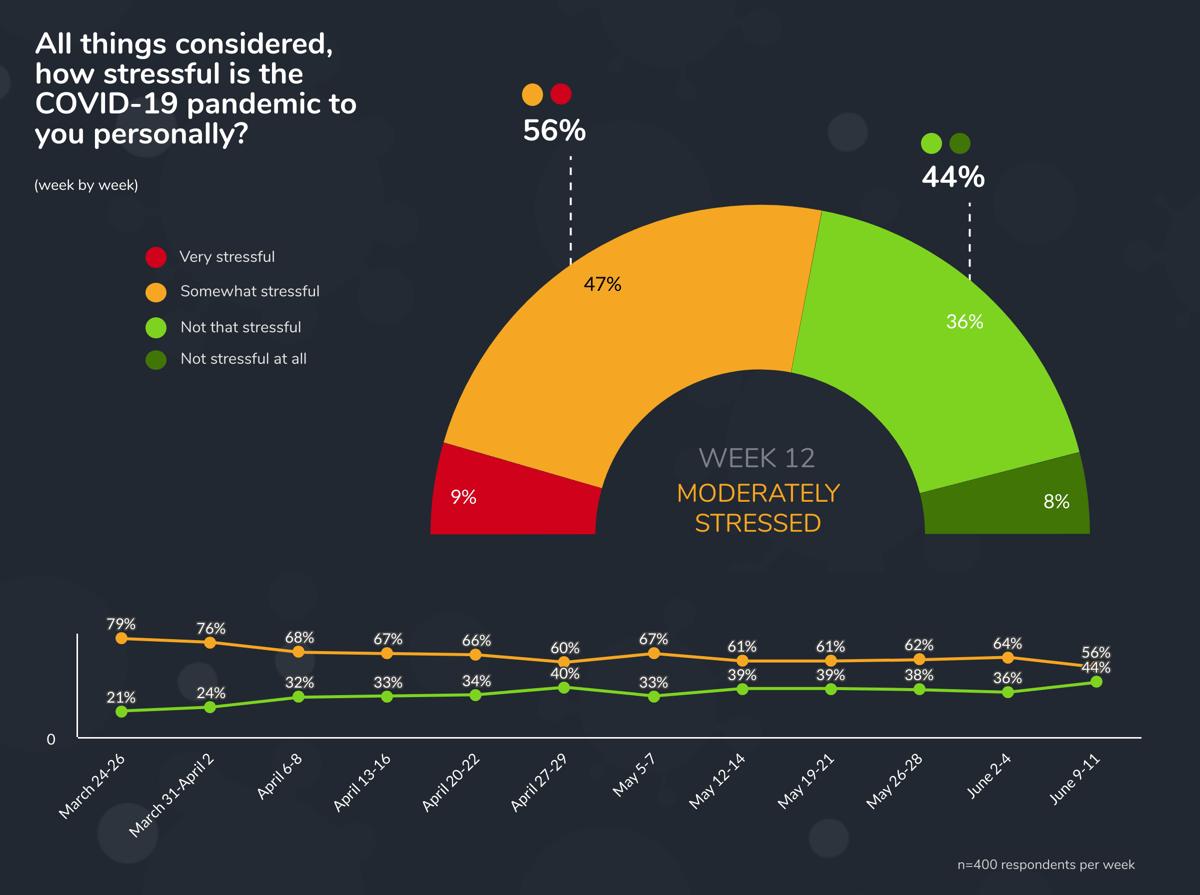 Stressful week 12